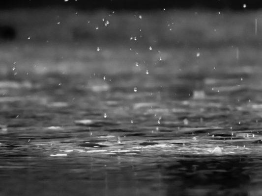 雨粒と波紋