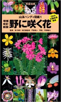 山溪ハンディ図鑑 野に咲く花 増補改訂新版