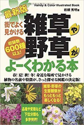 最新版 街でよく見かける雑草や野草がよーくわかる本