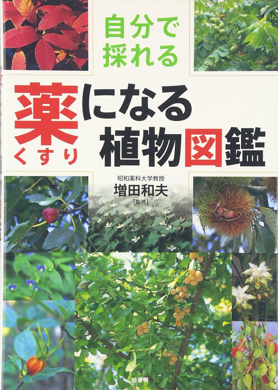 自分で採れる薬になる植物図鑑