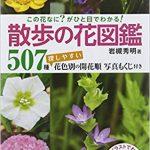 「この花なに?」がひと目でわかる! 散歩の花図鑑