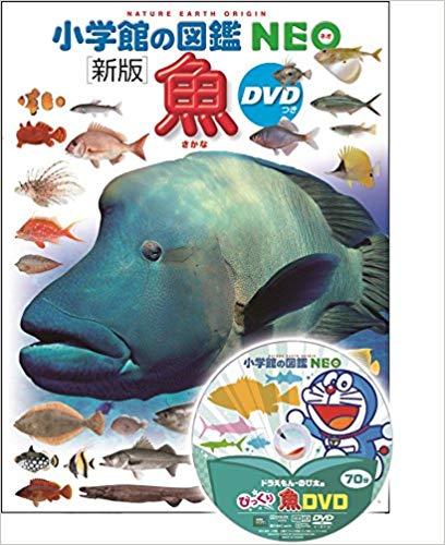 小学館の図鑑NEO魚
