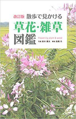 改訂版 散歩で見かける草花・雑草図鑑