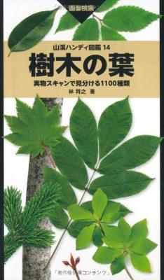 樹樹木の葉 実物スキャンで見分ける1100種類