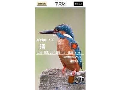 バードウェザー~綺麗な野鳥と天気予報~.jpg