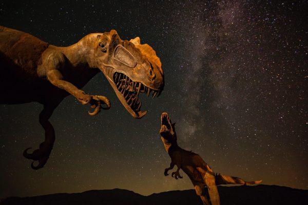 小さい恐竜と大きい恐竜