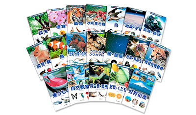 新ポケット版の学研の図鑑(全12巻)