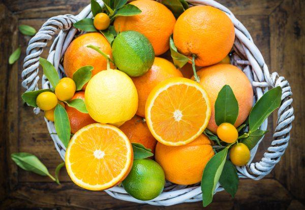 絵本を通じて他の柑橘類との違いを知る