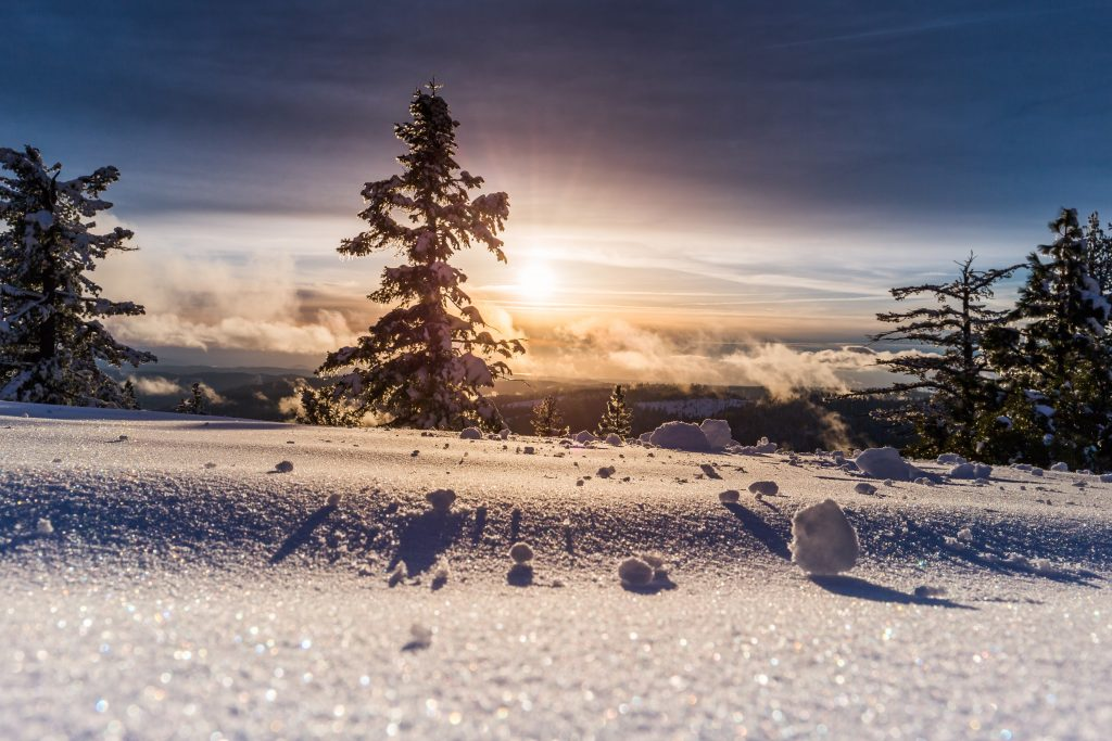 輝く雪景色