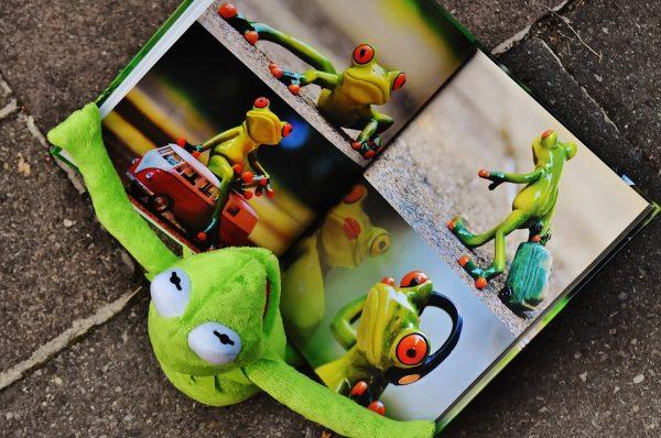 カエルと絵本