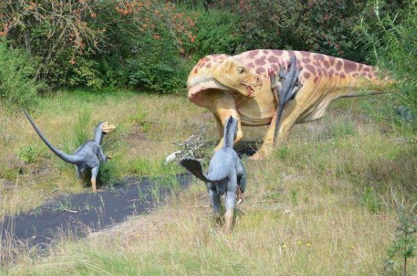 恐竜たちの写真