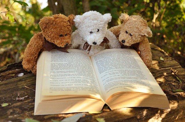 本を読む熊