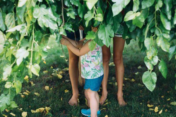 草に隠れる子どもたち