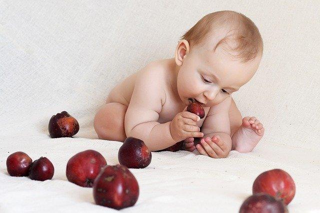 なすび 絵本 おすすめ 幼児 食育