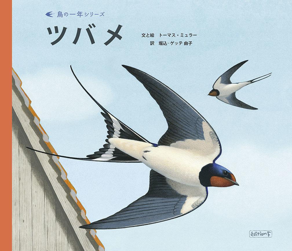 『鳥の一年シリーズ ツバメ』