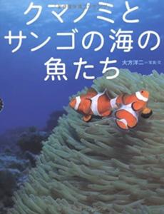 クマノミとサンゴの海の魚たち